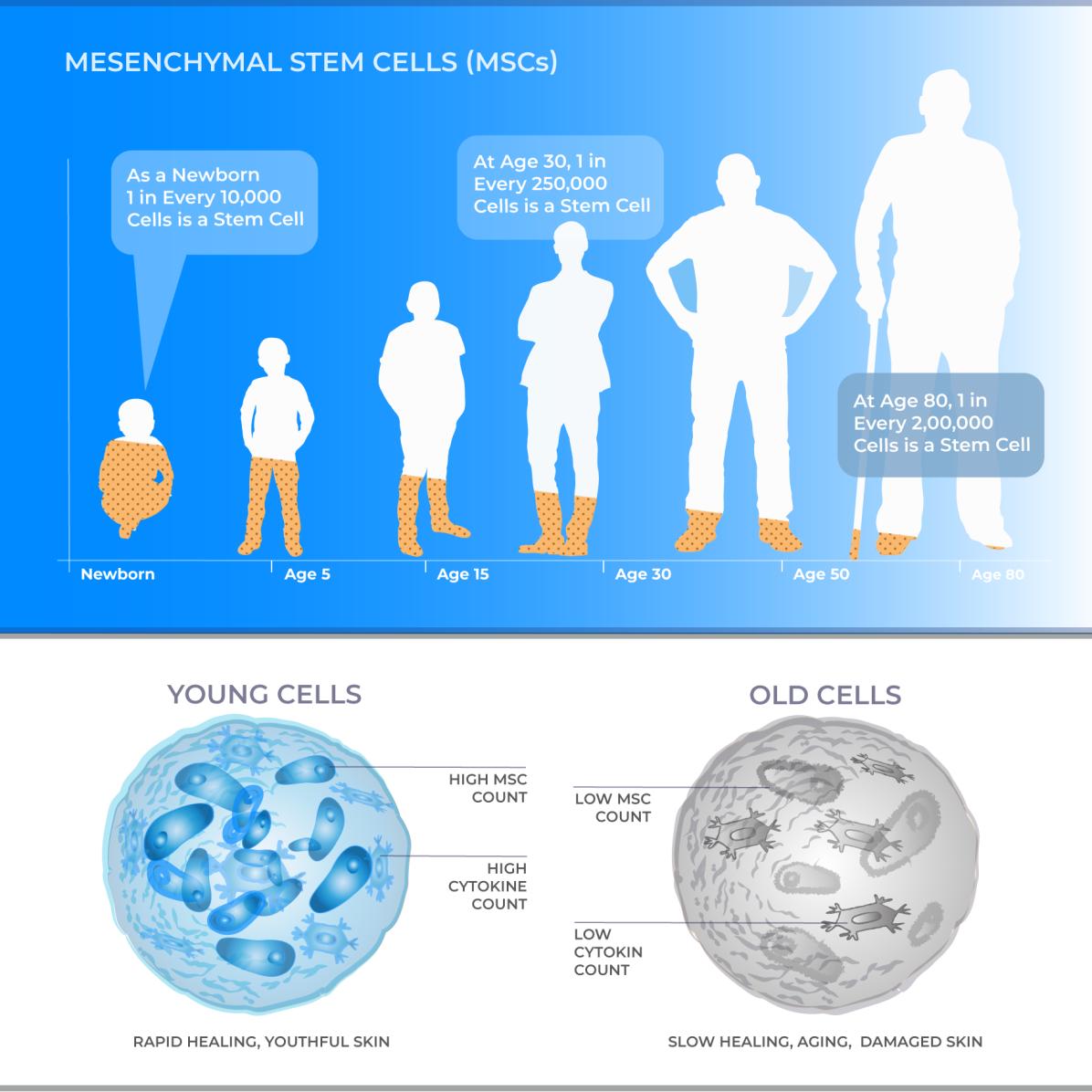 Stemedix_MSCs_infographic